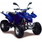 Adly ATV 150 Sport - ab Bj 2004