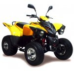 Adly ATV 300 Crossroad - ab Bj 2005