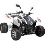 Adly ATV 320 Hurricane FLAT 2009 - 2011