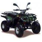 Adly ATV 50 II Utility XXL Bj 2008 - 2010