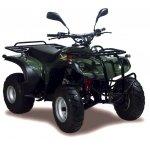 Adly ATV 50 II Utility XXL Bj 2011 -