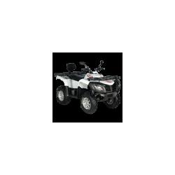 LINHAI 700 2010 - HYTRACK 700 2010