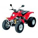 SMC Stinger 300